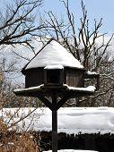 Dovecote in winter