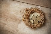 British Pound Coins With Bird Nest And Broken Egg