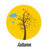 vector autumn landscape flat style background