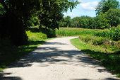Dirt Road In A Country Setting On A Summer Day