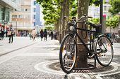 Bike Standing Near A Platan Tree In Frankfurt, Germany
