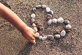 Baby's hand making heart of marine shingles on the sand.
