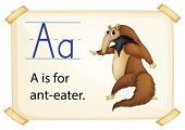 Illustration of a flashcard with letter A