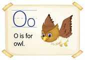 Illustration of a flashcard with letter O