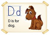 Illustration of a flashcard with letter D