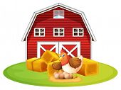 Illustration of a chicken and a barn