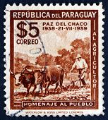 Postage Stamp Paraguay 1940 Plowing