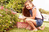 Girl Having Easter Egg Hunt In Garden