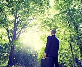 Businessman Among Trees In The Nature