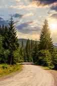 Road Through Forest In Mountains At Sunset