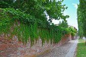 Fence With Brick