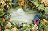 Fall foliage with birdhouse border on wood sign