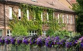 Beautiful House Overgrown With Ivy In Bavaria