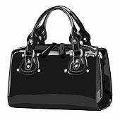 Designer female bags. vector