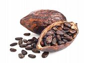 picture of bean-pod  - cocoa pod and beans isolated on a white background - JPG