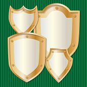 Shield with rivets set