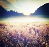 Autumn meadow in Yosemite