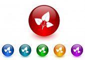 leaf internet icons colorful set
