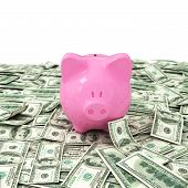 Money Dollar Dollars Business Money Box Pig Credit Bank Savings