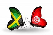 Two Butterflies With Flags On Wings As Symbol Of Relations Jamaica And Tunisia