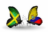 Two Butterflies With Flags On Wings As Symbol Of Relations Jamaica And Ecuador