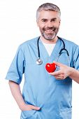 Cardiology Surgeon.