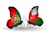 Two Butterflies With Flags On Wings As Symbol Of Relations Portugal And Oman