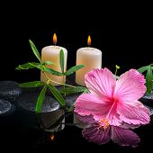 Spa Background Of Delicate Pink Hibiscus, Green Tendril Passionflower, Candles And Zen Stones With D