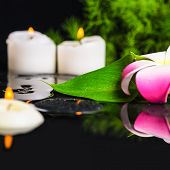 Beautiful Spa Concept Of Green Leaf Calla Lily, Plumeria With Drops And Candles On Zen Stones I