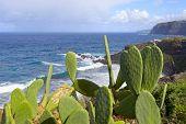 Playa Del Bolulo