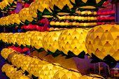 lotus lanterns at night
