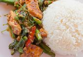 foto of thai food  - Thai food Thai spicy food Fried pork - JPG
