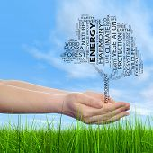 Concept or conceptual black ecology text word cloud tree in man or woman hand on blue sky background and grass