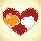 Two Beloved Cats On The Heart Shape Background.