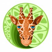 Giraffe head. Design color vector illustration.