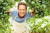 Happy Gardener.