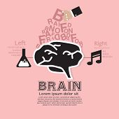 Brain Infographic Vector.