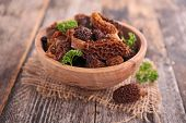 picture of morels  - fresh morel - JPG