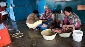 PULAU KETAM, MALAYSIA - JANUARY 18, 2015: Villagers work in a sea-food factory removing shells from prawns and shrimps. Pulau Ketam (Crab Island) is famous for sea food produce and restaurants.