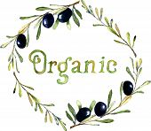 Watercolor hand drawn olive wreath with word Organic