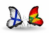 Two Butterflies With Flags On Wings As Symbol Of Relations Finland And  Grenada