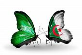 Two Butterflies With Flags On Wings As Symbol Of Relations Saudi Arabia And Algeria