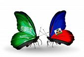 Two Butterflies With Flags On Wings As Symbol Of Relations Saudi Arabia And Haiti