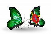 Two Butterflies With Flags On Wings As Symbol Of Relations Saudi Arabia And Dominica