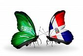 Two Butterflies With Flags On Wings As Symbol Of Relations Saudi Arabia And Dominicana
