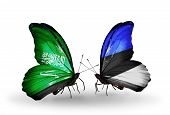 Two Butterflies With Flags On Wings As Symbol Of Relations Saudi Arabia And Estonia