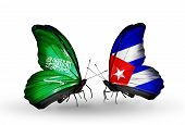 Two Butterflies With Flags On Wings As Symbol Of Relations Saudi Arabia And Cuba