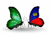 Two Butterflies With Flags On Wings As Symbol Of Relations Saudi Arabia And Liechtenstein