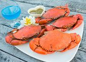 foto of cooked blue crab  - Steamed crab seafood fresh with blue cocktail - JPG