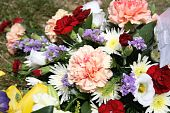 many flowers